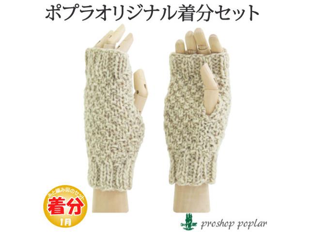 毛糸のプロショップ ポプラ本店販売している編み物キットその2